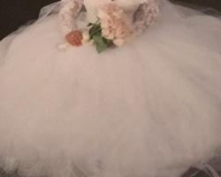 فستان عروس بنص السعر للبيع