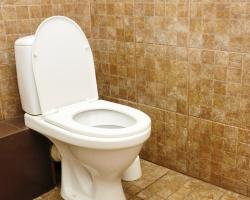 طرق طبيعية لتنظيف المرحاض
