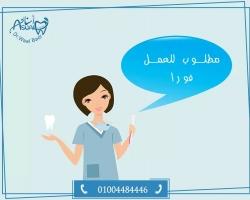 مطلوب سكرتيرة ومساعدة طبيب لعيادة اسنان