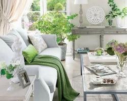 الأبيض والزرع الأخضر في البيت