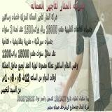 عمر صالح
